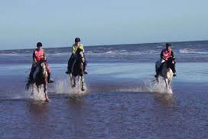horseback riding in south padre